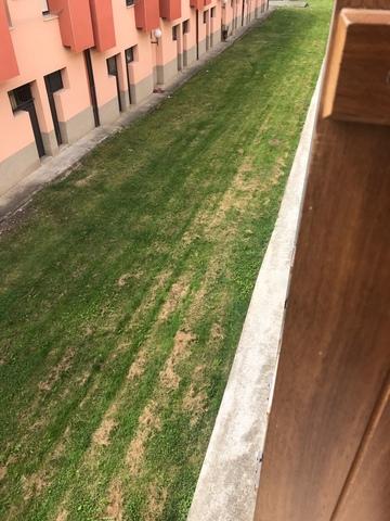 AKERRUNTZA - ARNATZ - foto 8