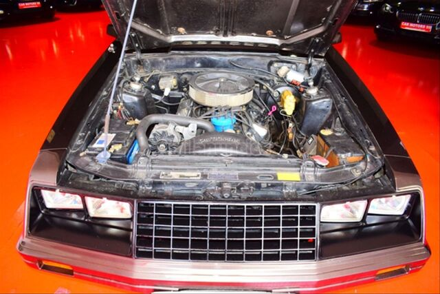 FORD MUSTANG COUPE 5. 0GT 1978 - foto 22