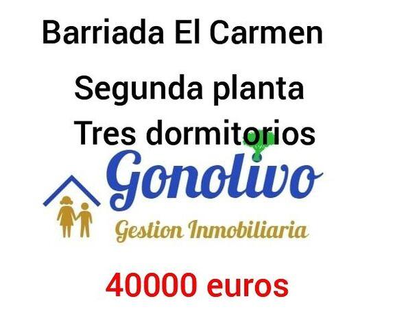BARRIADA DEL CARMEN - FONTANILLA - foto 8