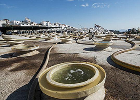 OZONO ECOLÓGICO EN SISTEMAS CIP ALMAZARA - foto 2