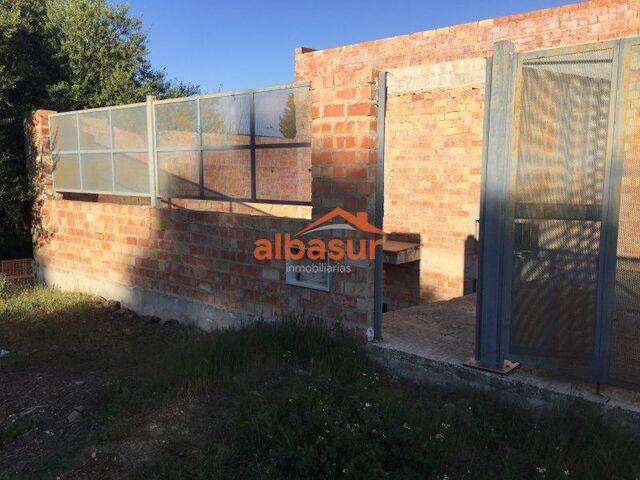 1004483- ALCOLEA - .  - foto 2