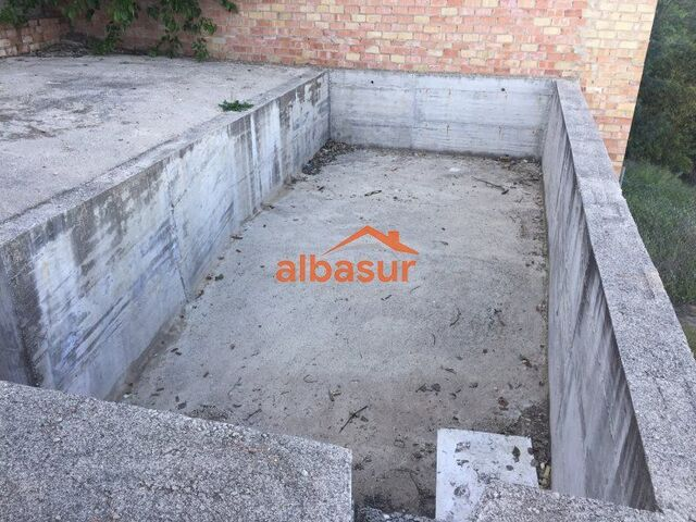 1004483- ALCOLEA - .  - foto 4