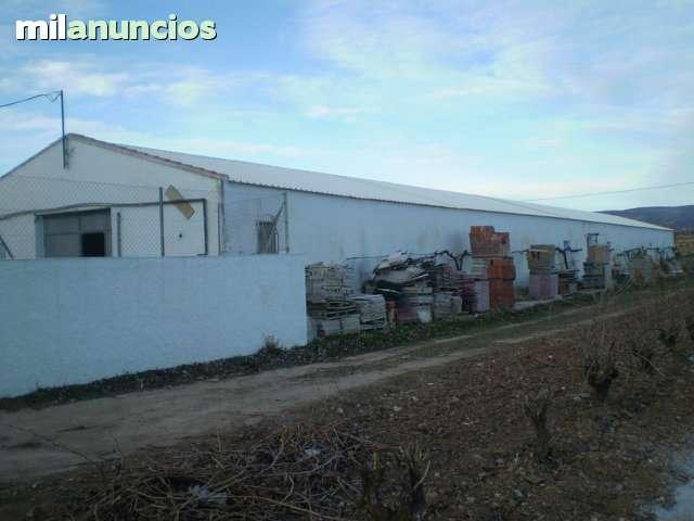 NAVE AGRICOLA EN EL SEVELLAR CON HUERTO - foto 1