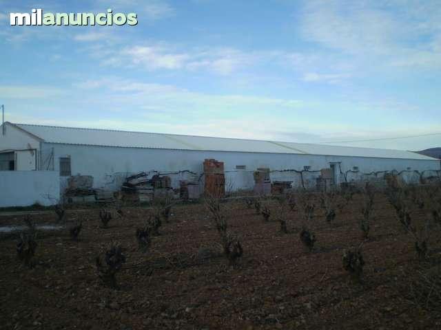 NAVE AGRICOLA EN EL SEVELLAR CON HUERTO - foto 2