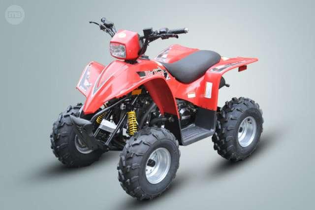 MITT 330 - ATV 330 4X4 - foto 4