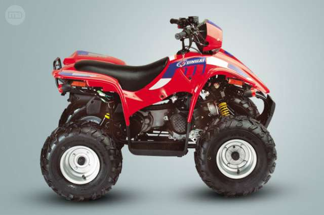 MITT 330 - ATV 330 4X4 - foto 5