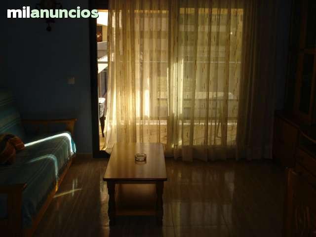 PRECIO REBAJADO REF. 186 - foto 3