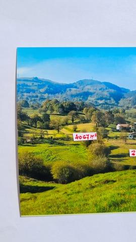 PENILLA DE VILLAFUFRE - foto 2