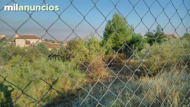 SAN BERNARDO- CIGARR - CALLEJON DE LOCHES  6 - foto 3