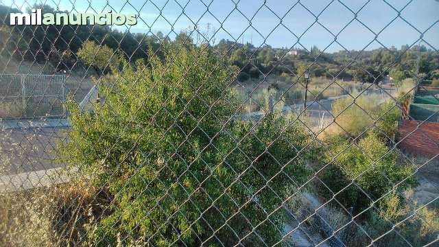 SAN BERNARDO- CIGARR - CALLEJON DE LOCHES  6 - foto 7