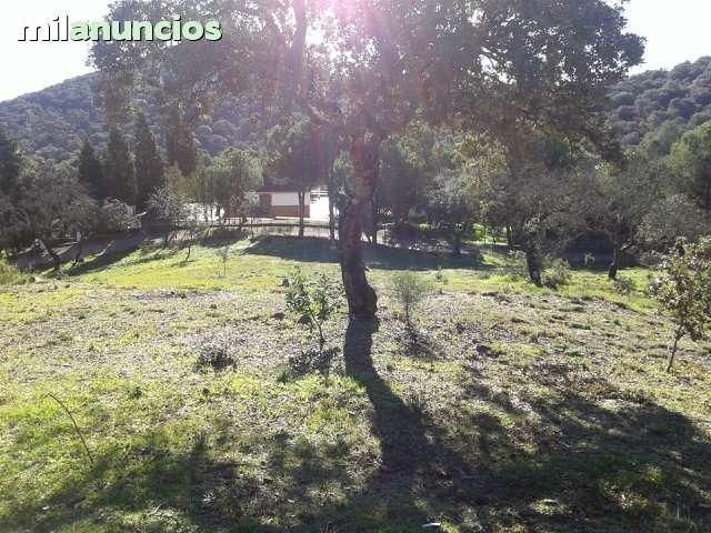 CORDOBA/C. MURIANO(EMBALSE GUARDANUÑO) - foto 5