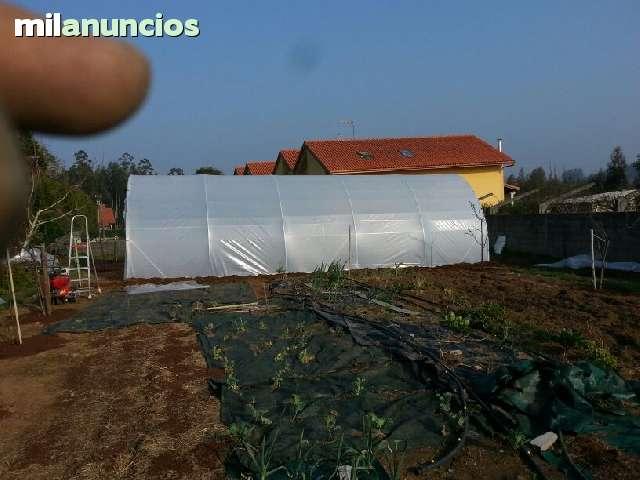 INVERNADEROS ECONMICOS - foto 2