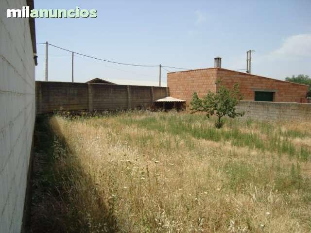 ALCUESCAR (CACERES) - foto 5