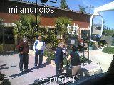 Autobuses en Alicante - foto