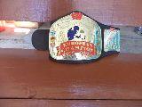 wwe cinturón europeon champions defectuo - foto