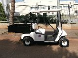 GOLF BUGGY ELECTRICO - foto
