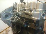 Motor nuevo mitsubishi 4d56 - foto