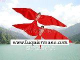Golondrina Hechos a mano chino Kite-Red - foto