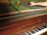 Se afinan pianos. - foto