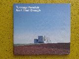 Teenage fanclub-ain t that enough - foto