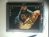 Windows Tablet con Wacom para dibujar - foto