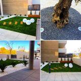 Diseño y mantenimiento de Jardines. - foto