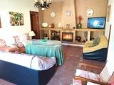Aracena villa hortensias casa rural - foto