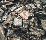 Gestion de residuos no peligrosos - foto