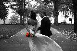 FotÓgrafos de bodas - foto