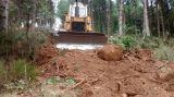 trabajos forestales excavadora bulldozer - foto