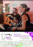Grupo Flamenco. Animación musical - foto