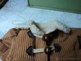 trenca de mocosete - foto