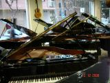 Afinador de pianos - foto