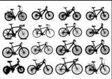 alquiler de bicicletas toda las tallas - foto