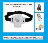 Collar antiladrido con gravacion persona - foto