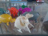 Muñecos colección huevos dinosaurio!! - foto