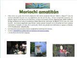 Olite, funes. mariachis mexicanos - foto