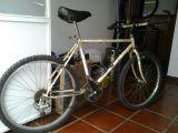 Mecanico de bicis - foto