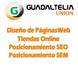 Diseño web y tienda online Mairena Alcor - foto