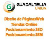 Diseño web - tienda online Alcalá Guad. - foto