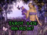 tarot barato económico LUCIA 806 002 067 - foto