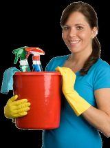 limpiadora - foto