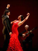 Flamenco y Copla -Grupo se ofrece- - foto