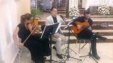 Música para su evento (Bodas, cenas...) - foto
