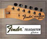 Fender telecaster custom headstock decal - foto