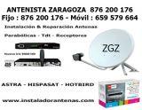 Antenistas Zaragoza - foto