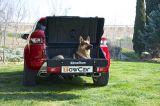 TOWBOX V1 DOG!!!!!!!!! - foto