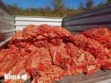 su egurra salgai /venta de leña Donostia - foto