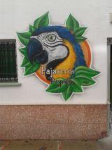decoracion,graffiti,mural - foto