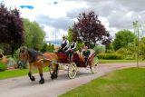 FotÓgrafo bodas civiles 100€ - foto